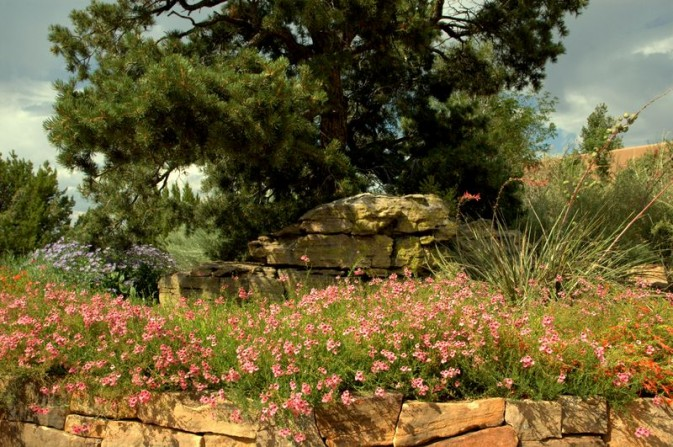 boulder, stone work, rock wall, colorful flowers, character pine, yucca