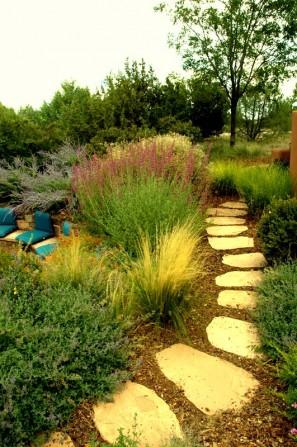 flagstone path, stepping stones,grasses, ornamental grasses, southwestern landscape, santa fe landscape, agastache,