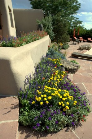flagstone, flagstone patio, grout joints, annuals, pool, swimming pool, stucco walls